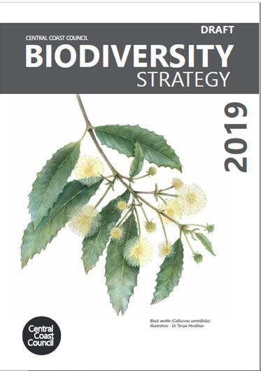Biodiversity Strat image