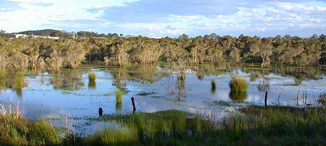 porters_creek_in_flood